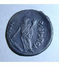 Olbia. Tetrassarion of Septimius Severus. 198-201 AD Lot 2