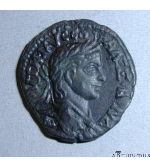 Olbia. Tetrassarion of Alexander Severus. 222-235 AD