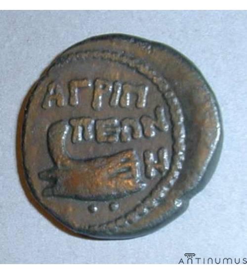 Агриппия (Фанагория). 8 унций. 37-38 гг. н.э. ЛОТ 2
